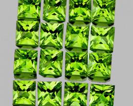 3.00 mm Square 16 pcs 2.72cts Green Peridot [VVS]