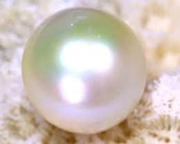 11.90MM 12.80Ct Australian South Sea Salt Water Pearl D0909/A24