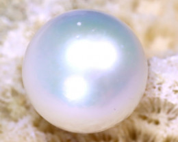 12.10MM 13.00Ct Australian South Sea Salt Water Pearl D0910/A24