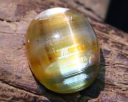 Cat's Eye Opal 4.69Ct Natural Oval Cabochon Stunning B566