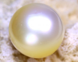 12.20MM 13.05Ct Australian South Sea Salt Water Pearl D1714/A24
