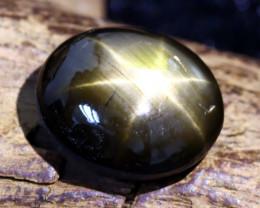 Star Sapphire 6.71Ct Natural Thailand Golden Black Star Sapphire B838