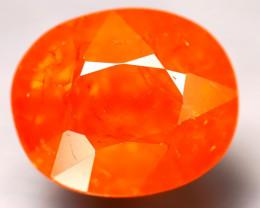 Fanta Garnet 12.63Ct Natural Orange Fanta Garnet D1904/B34