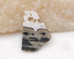 21Cts Natural Ocean Jasper Pendant Bead , Nugget Agate Pendant H769