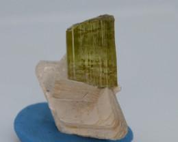Top Quality 58.10  ct Natural Bi Color Tourmaline ~ Speciman
