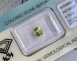 Untreated Vivid Greenish Yellow Sapphire 0.73ct IGI CERTIFIED Oval Cut Gem