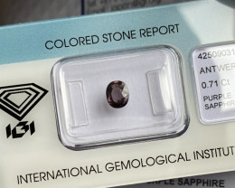Untreated Pink Purple Sapphire 0.71ct IGI CERTIFIED Oval Cut Sealed Gem
