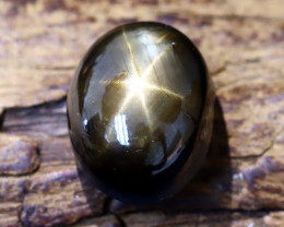 Star Sapphire 6.57Ct Natural Thailand Golden Black Star Sapphire B1588