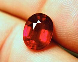 5.54 Carat Best Cherry Ruby - Hand Held, Breathtaking Beauty