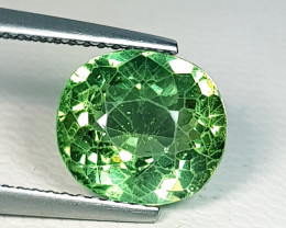 3.45 ct AAA Quality Gem Beautiful Oval Cut Natural Green Apatite