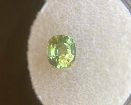 Unique Bi Colour Green Yellow Sapphire 1.35ct Cushion Cut 6.5x5.5mm Rare Ge