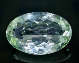 23.87 Crt Natural Green Prasiolite Amethyst Faceted Gemstone.( AB 48)