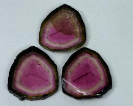 19.90 Cts Natural perfect watermelon Tourmaline slices pair Gemstone