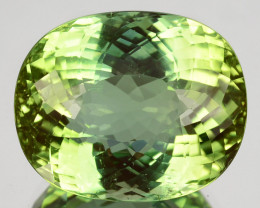 Flawless!16.41Cts Natural Mint Green Tourmaline Oval Mozambique