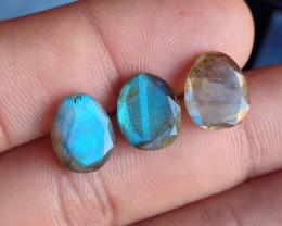 3 Pcs Labradorite Natural Gemstone Rose Cut Fancy VA1803
