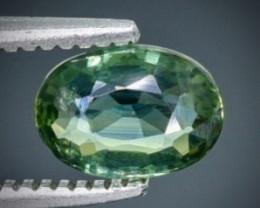 0.71 Crt Sapphire  Faceted Gemstone (Rk-24)