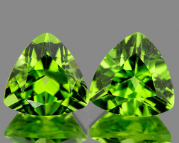 7.00 mm Trillion 2 pcs 2.72cts Green Peridot [VVS]
