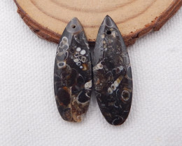 30cts Ammonite Fossil Earrings Handmade Earrings Gift H1065