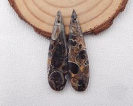 27.5cts Ammonite Fossil Earrings Handmade Earrings Gift H1066