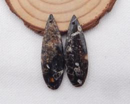 28.5cts Ammonite Fossil Earrings Handmade Earrings Gift H1068