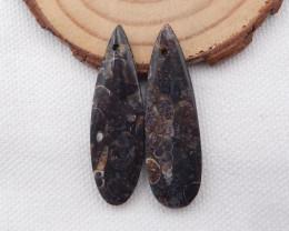 35.5cts Ammonite Fossil Earrings Handmade Earrings Gift H1069