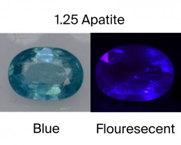 Top Color 1.25 Ct Natural Blue Apatite with Flouresecent