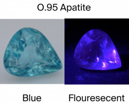 Top Color 0.95 Ct Natural Blue Apatite with Flouresecent