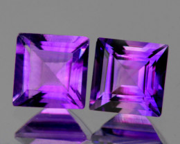 6.00 mm Square 2 pcs 1.97cts Purple Amethyst [VVS]