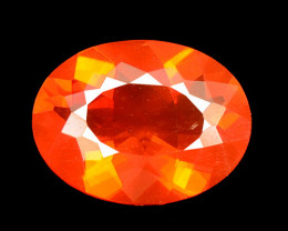 Mexican Fire Opal 0.70 Cts Very Rare Unheated Gemstones