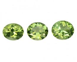 Tourmaline 3.00 Cts 3 Pcs Fancy Natural Green Color Natural