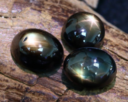Star Sapphire 8.03Ct 3Pcs Natural Thailand Golden Black Star Sapphire AB487