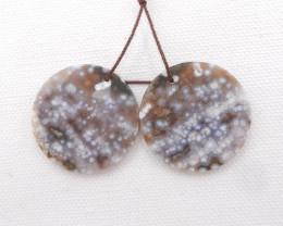 58cts Beautiful Ocean Jasper Earrings,Natural Jasper Summer Earrings H1099