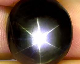 16.77 Carat Natural Thailand Black Star Sapphire - Gorgeous