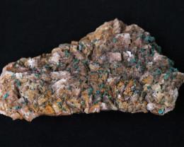 1500 ct Moroccan  malachite on dolomite  Specimen  MM79