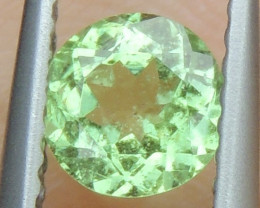 Merelini Mint Garnet