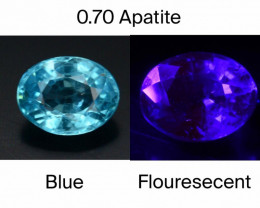 Top Color 0.70 Ct Natural Blue Apatite with Flouresecent