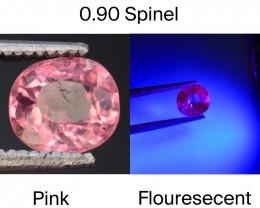 Top Cut 0.90 CT Dazzling Color Natural Florescent Spinel