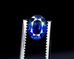 1.55 Carats Royal Sapphire Gemstone
