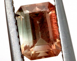 1  CTS  OREGAN BI-COLOUR  SUNSTONE  PG-325