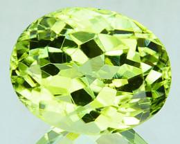 ~AMAZING~ 3.18 Cts Natural Sillimanite Radium Green Oval Cut Sri Lanka