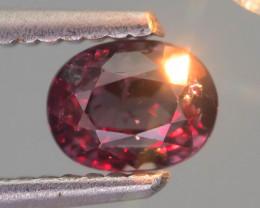 Rarest Garnet 1.07 ct Dramatic Color Change SKU-40