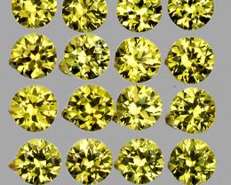 1.20 mm Round Machine Cut 100pcs 1.00ct Yellow Sapphire [VVS]