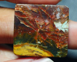 31.185CRT AMAZING RARE PETRIEFIED COOPER OPAL