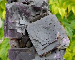 Fluorite - 8420 grammes - Cave-In-Rock Mine, Hardin Co., Illinois, USA