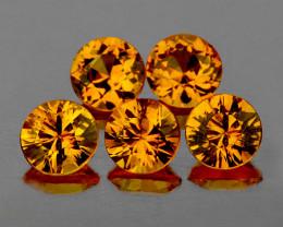 3.40 mm Round 5 pcs 0.92ct Yellow Sapphire [VVS]