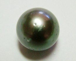 13 CTS BLACK PEARL FROM TAHITI   AS-64