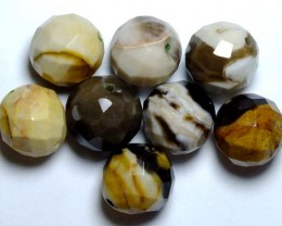 PETRIFIED WOOD BEADS, (8PC) 59.20CTS NP-1128