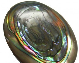 ABALONE  CAB ''EYE'' FROM AUSTRALIA 9 CTS [PF293 ]