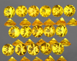 2.30 mm Round 16 pcs 1.02ct Yellow Sapphire [VVS]