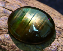 Star Sapphire 5.20Ct Natural Thailand Golden Black Sapphire A1902